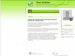 Meletespeggychatzidaki.eu - Custom website configuration - WCAG 2.0 Comformance / Compliance